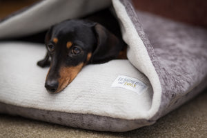 Luxury Washable Doggy Den Bed