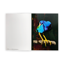 Load image into Gallery viewer, Erik Berglin: The Bird Project 2006–2017