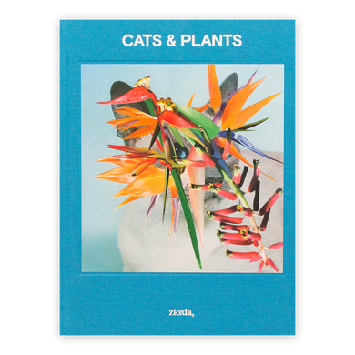 Stephen Eichhorn: Cats and Plants