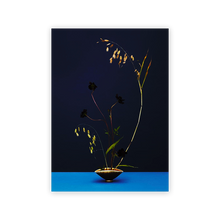 Load image into Gallery viewer, Modern Ikebana: A New Wave of Floral in Floral Design