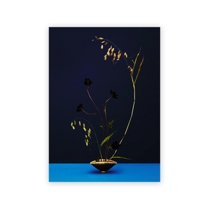 Modern Ikebana: A New Wave of Floral in Floral Design