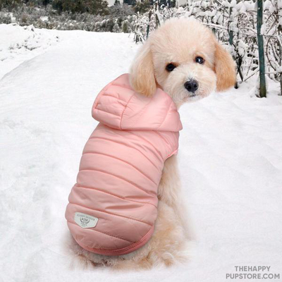 warm_winter_dog_jacket