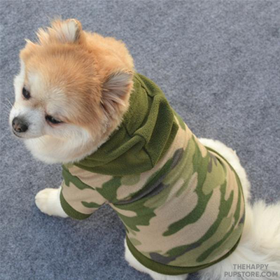 army_camouflage_dog_jacket