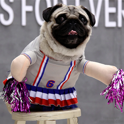 Cheerleader Design Dog Costume