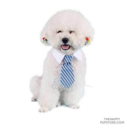 Dog Tie Dress Up Accessory