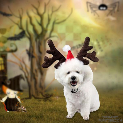 Reindeer Horns Design Dog Costume