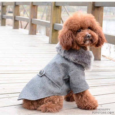 Buttoned Winter Dog Jacket