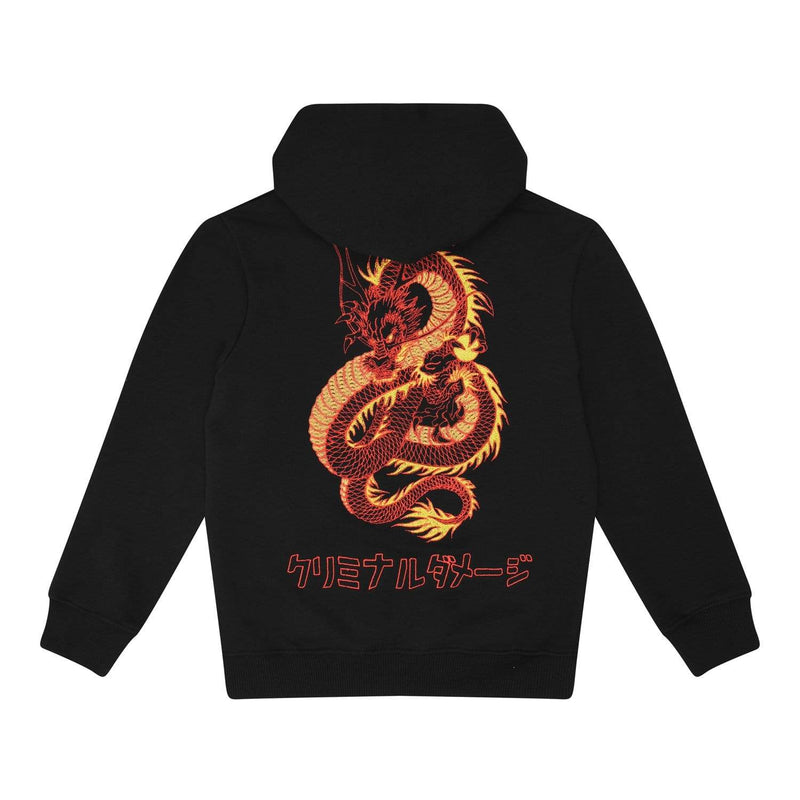Kids Dragon Hood