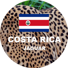 Load image into Gallery viewer, Costa Rica Jaguar Honey Fresh Roasted Coffee