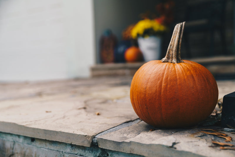 3 Decorating Tips to Get Your Home Ready for the Fall