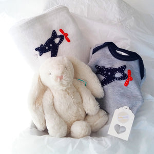 Cuddle Comfort Baby Boy Gift Set - Cream Soft Bunny Love