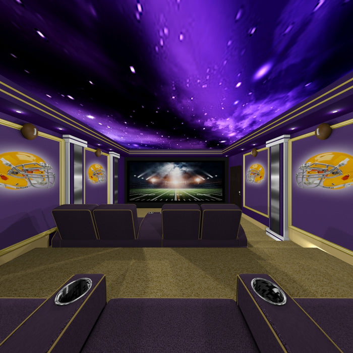 Sports Home Theater