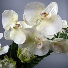 Load image into Gallery viewer, GRACE - White Phalaenopsis Orchid & Tropical Foliage