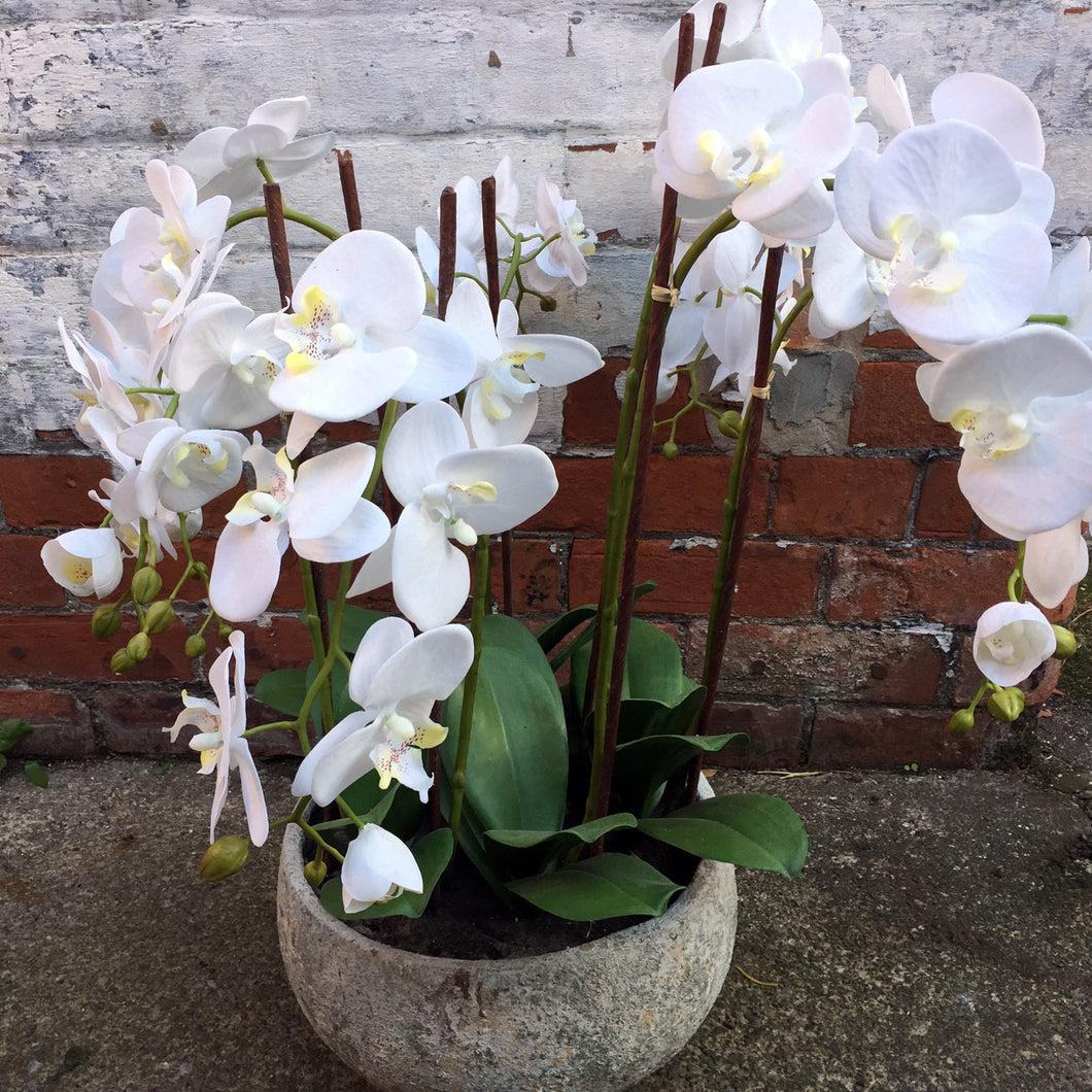 Large Artificial White Phalaenopsis Orchid with Stone Pot