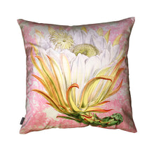Load image into Gallery viewer, Vanilla Fly Protea Pink Toile Cushion