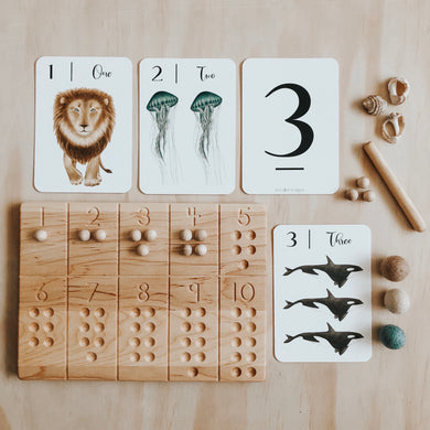 Nature's 123 flashcards