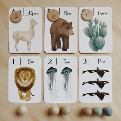 Nature's ABC flashcards