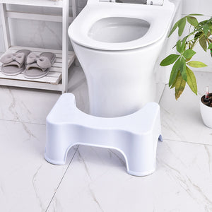 Squatting Potty