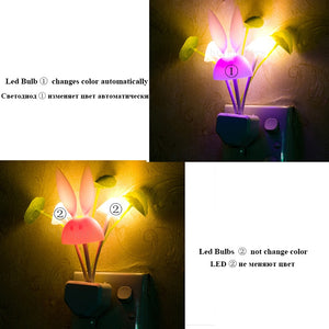 Wall Socket Light