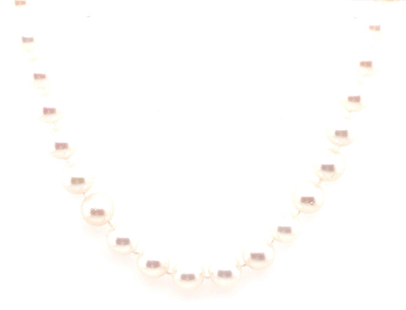 9ct Gold Akoya Pearl Necklace