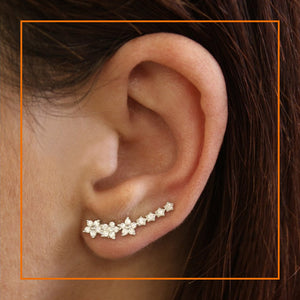 Gemset Flower Ear Crawler