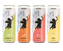 Load image into Gallery viewer, Nectar Hard Seltzer Variety 12 Pack - Nectar Hard Seltzer Delivered By TapRm