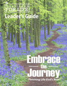 Embrace the Journey Curriculum
