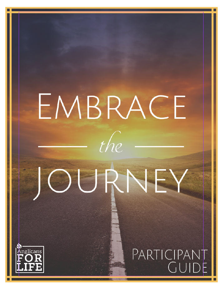 Embrace the Journey Participant Guide