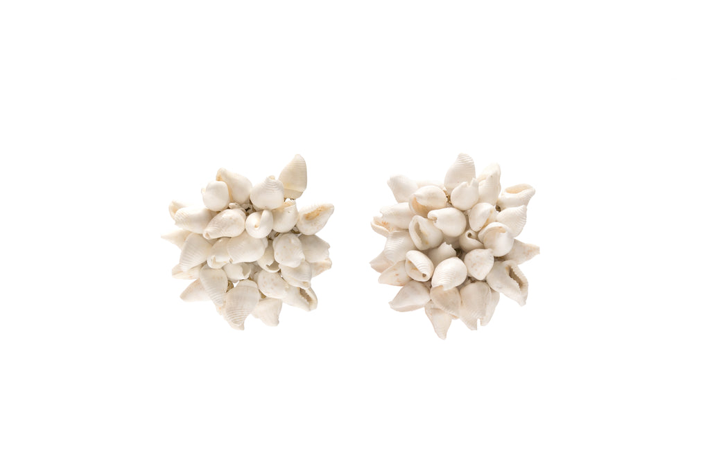 Seashell Natural Earrings