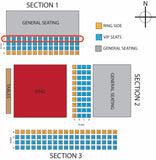 EllisMania Nineteen Ticket- VIP North Side Seating D