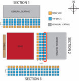 EllisMania Nineteen Ticket- VIP East Side Seating D