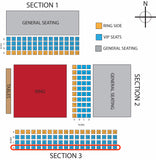EllisMania Nineteen- VIP South Side Seating D