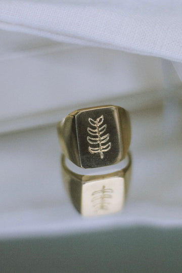 Palm Signet Ring in Gold