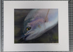 """Rainbow Trout"" Print $16 Yard Sale Art - Stripn Flywear"