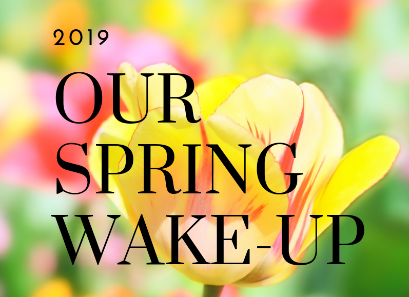 Our Spring Wakeup