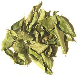 Sri Satymev Kadi Patta (Curry Leaves)