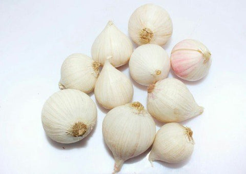Sri Satymev White Garlic (Small Size)