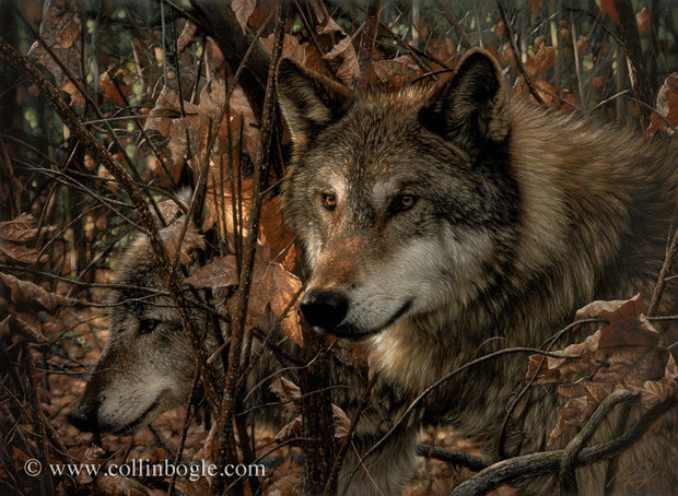 Wolf companions in autumn painting art print by Collin Bogle.