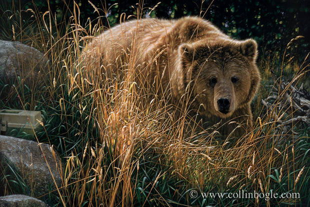 Brown bear painting art print by Collin Bogle.