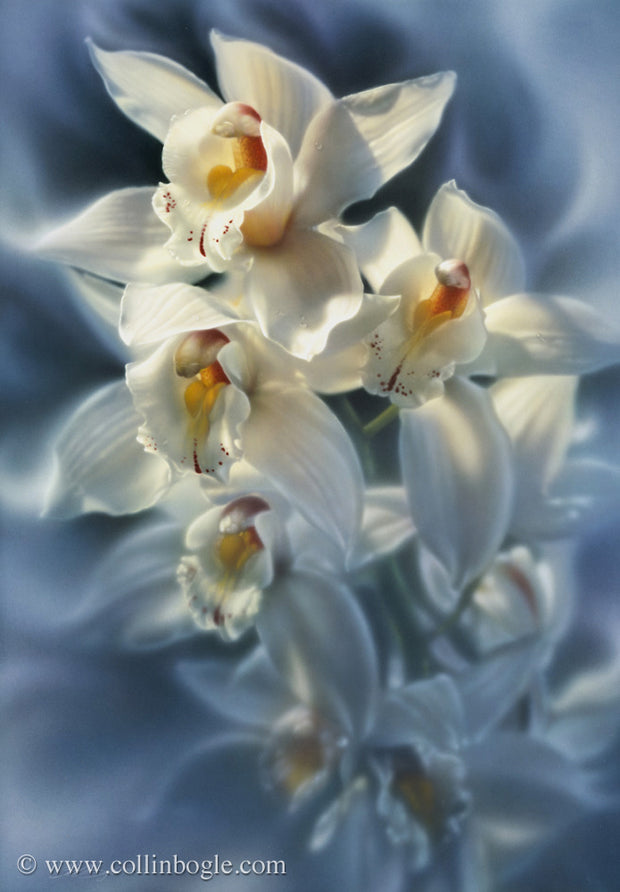 Orchids painting art print by Collin Bogle.
