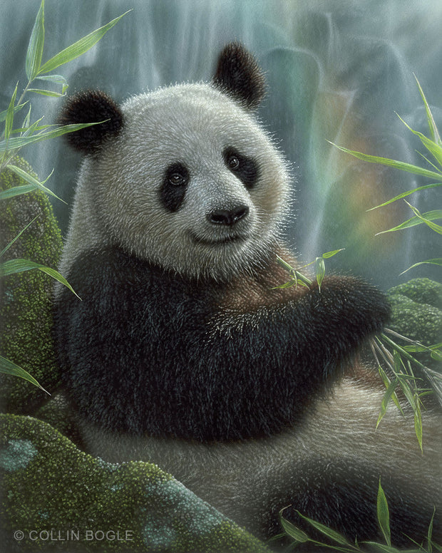 Panda Paradise Painting Art Print by Collin Bogle