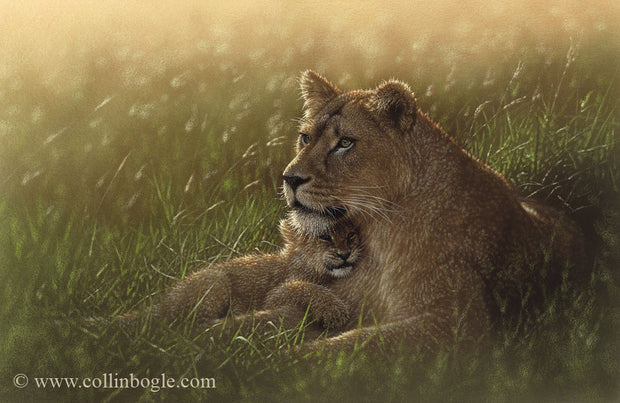 Lion mother and cub painting art print by Collin Bogle.