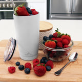Arctico 20oz Smoothie Fruit Shake Insulated Tumbler
