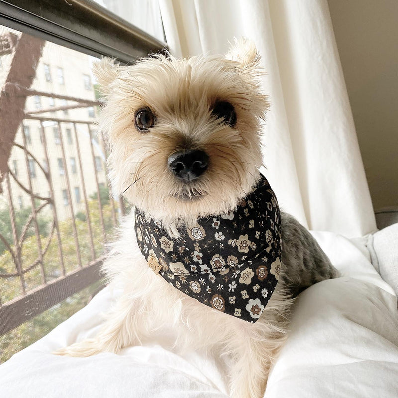Reversible Pet Bandana: Autumn Floral Print