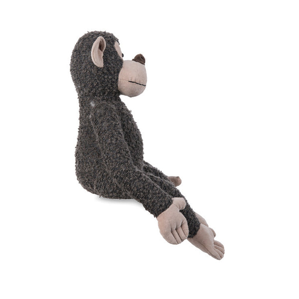 Citta Long Limbs Monkey