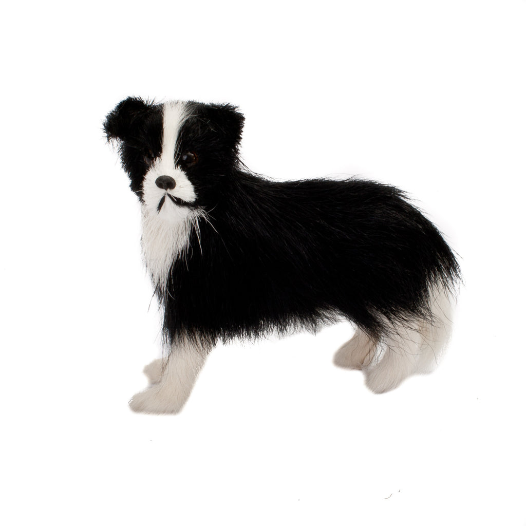 Small Fur Sheep Dog