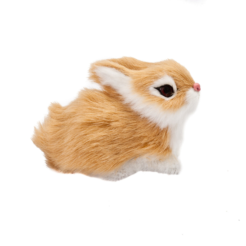 Small Fur Rabbit