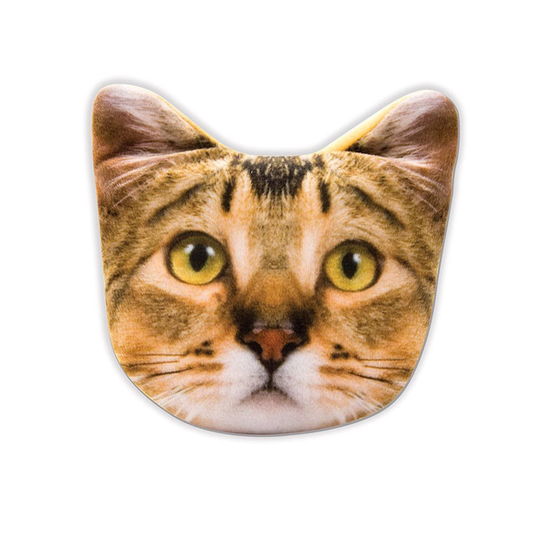 Pet Purse Kitty Tabby Amber