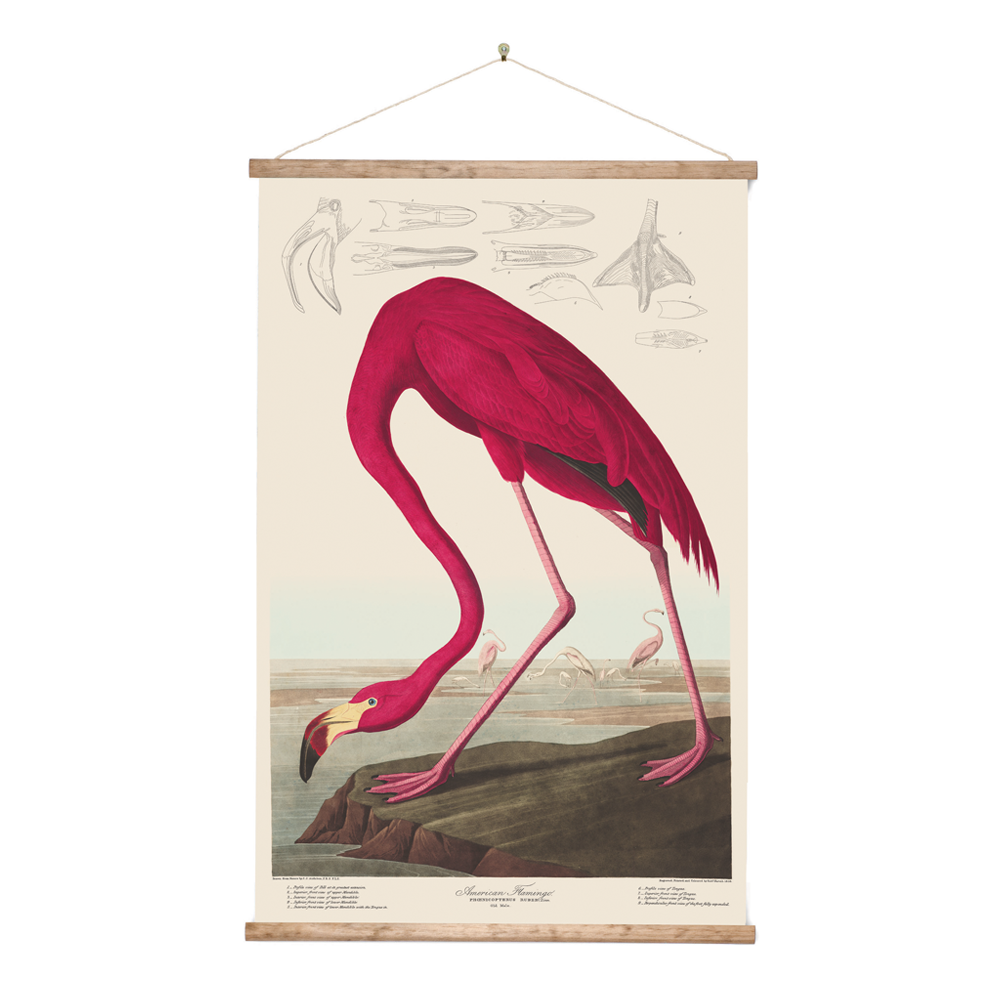 Retro Wall Chart Flamingo
