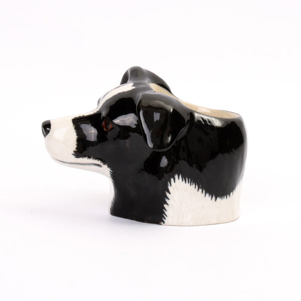Quail Dog Border Collie Face Egg Cup